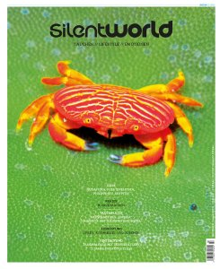 Silent World Magazincover